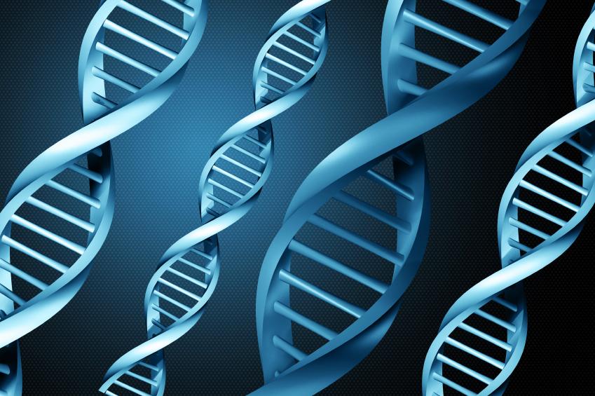 泰国试管婴儿之问:我们怎么知道自己有没有遗传病.jpeg