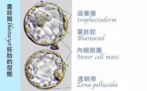 微信图片_20200814023438.jpg